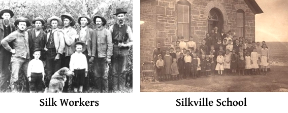 SilkvilleScenes