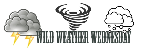 Wild Weather Wednesday:  Nineteenth Century Rainmaking (Part Two)