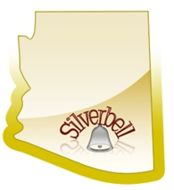 Ghost Town Wednesday:  Silverbell, Arizona