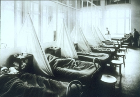 A Look Back: A Pandemic Story Worth Remembering (Blue as Huckleberries and Spitting Blood)